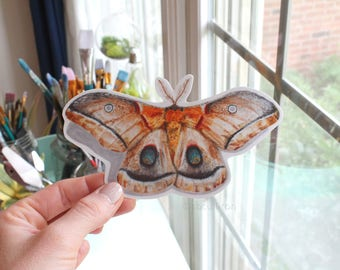 Moth Laptop Sticker, Butterfly laptop sticker, Bumper sticker, moth vinyl sticker, moth sticker, moth vinyl sticker, moth