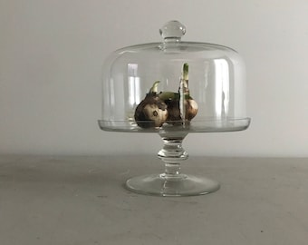Cake Stand with Cover
