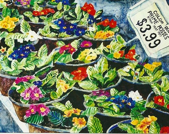 Primroses For Sale Original Watercolor Painting