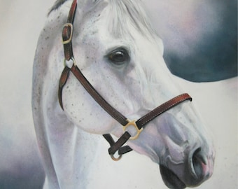 GREY THOROUGHBRED -  horse print of original pastel portrait painting racehorse gray grey dressage horse giclee print