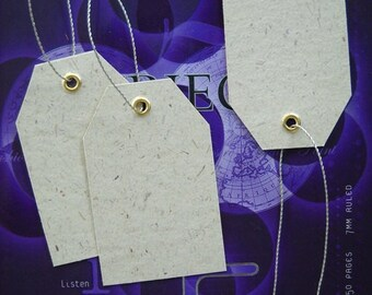 750 Eco Friendly Gift / Price Tags with Silver String - VM01