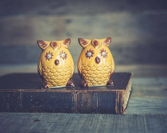 Vintage Owl Salt and Pepper Shakers with Googley Eyes Ceramic Yellow Gold and Brown Made in Japan Retro Kitchen Kitsch Kitschy Decor Set