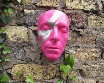 David Bowie Life Cast resin Paint inspired by the aladdin sane album cover