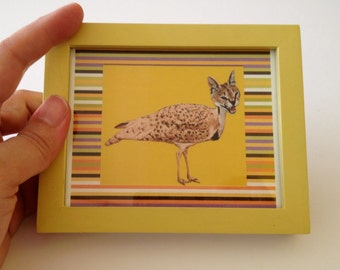 Catbird,Animal Art, Mini Framed Picture, Quirky Catbird Hybrid