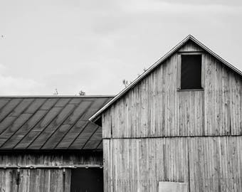 Barn 2; fine art photography, modern, wall art, barn, farmhouse, wall decor, black and white, photo, cottage, wisconsin, rustic, by F2images