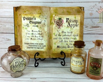 Spell book and potion bottle set, witches spell book, witch spellbook, witchcraft, witch spells, Halloween decor