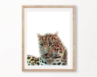 Baby Leopard Cub Poster Art PRINTABLE Print LARGE Nursery Decor Wall Art  Animals Color Watercolor / Linen Look Vintage art Baby  Bedroom