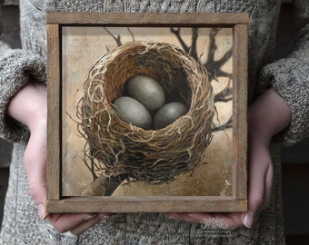 Bird Nest with Three Eggs Art Print, Square Bird's Nest Wall Decor, Nest Art Work, Nest with Eggs, Wedding Gift Idea, Barn Wood Frame
