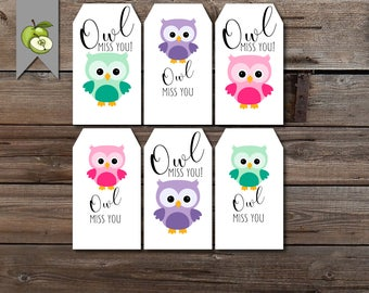 friend owl gift tag, owl miss you, leaving tag, last day of school, owl miss you this summer, thank you tag, Teacher gift Tag, Printable