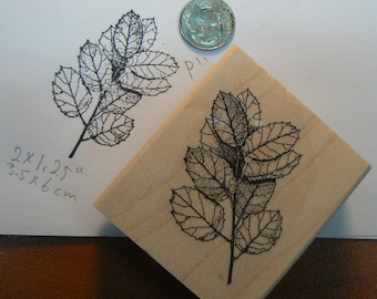 P11 Branch with leaves, nature, rubber stamp