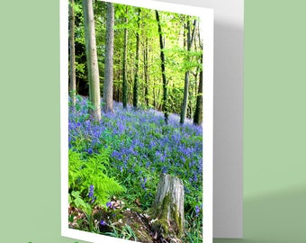 bluebells greeting card - flower card - bluebell - nature photography - personalised card - any occasion card - woodland photograph