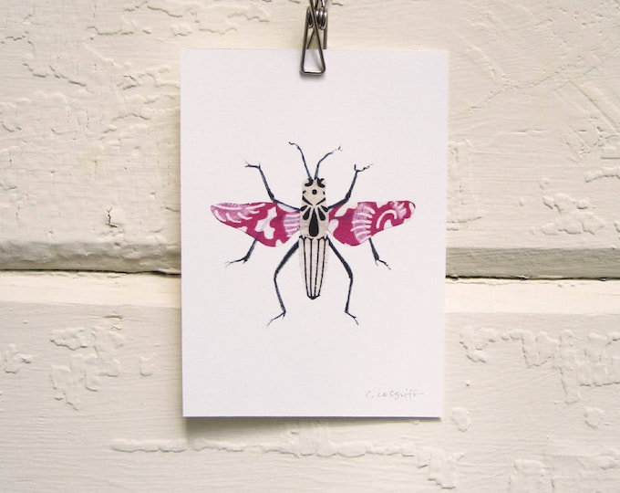 Hot Pink and Black Bug Print