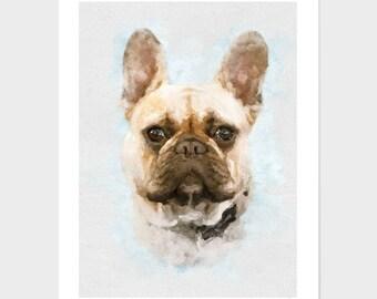 Custom Pet Portrait, Custom pet drawing, animal portrait, portrait painting,pet portrait artist, dog portraits, custom pet, personalized pet