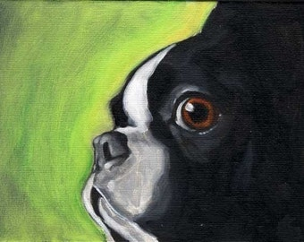 Boston Terrier PRINT from oil painting, Boston Terrier gift, Boston Terrier art