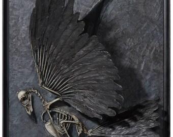 Skeletal Crow (sculpture)