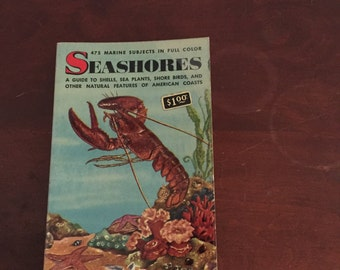 Seashores! Vintage Book - Golden Nature Book by Zim & Ingle. Color Illustrations!