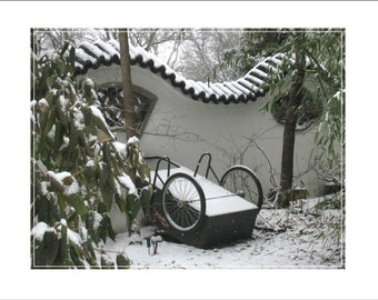 Idle Cart Behind the Chinese Garden Wall (MO Botanical Garden)