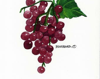 Red Grapes, Wine, Handmade notecards No.  1726.1   Red Grapes