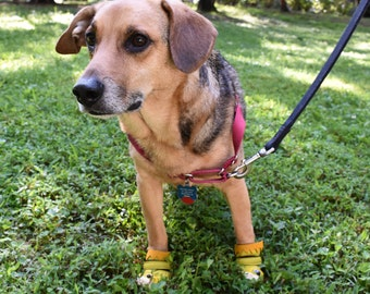 Dog Shoes / Dog Booties / Dog Boots / Dog Clothing / Christmas Dog Clothing / Dog Accessories
