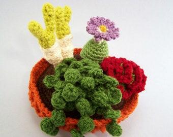 Large Succulent Garden Crochet