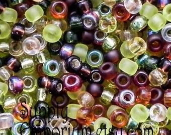 Miyuki 11/0 Good Earth Seed Bead Mix - 10 Grams - Good Earth 11/0 Seed Bead Mix - 5527 - Miyuki Good Earth Seed Bead Mix, 11-MIX-11
