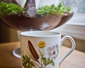 Small Herbal Mug - Cattail - Buttercup - Queen Annes Lace - Herbalists and Plant lovers Cup
