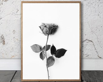 Modern Home Decor - Scandinavian Wall Art, Rose Print, Digital Download, Black And White Photography, Monochrome Decor, Minimalist, Chic