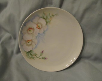 Hand painted 6 and 3/4 inch side/ decortive plate/ Pale pastel colors