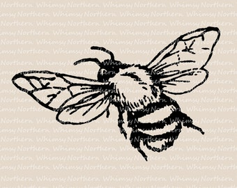 Bee Clip Art - Vintage Bumble Bee Image - Bee Illustration - Insect Clip Art - Bee Digital Stamp - Bee Graphic - Commercial Use OK