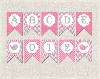 Bird Banner Bunting Birthday Complete Alphabet Pink Gray 1st 2nd 3rd Printable Girls IV-9