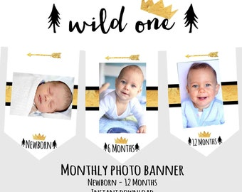WILD ONE Birthday party decorations Wild One Month Photo banner Boy Crown Monthly Photo banner Arrow Month Tribal Milestone Gold Black