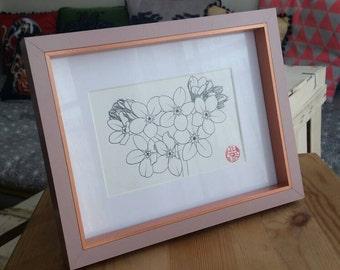 "Framed original drawing ""Myosotis"""