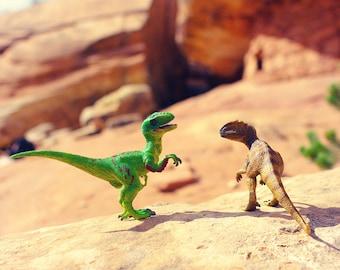 Dinosaur Art Print, Boys Room Decor, Velociraptor Dinosaur Print, Fun Nursery Wall Art, Kids Wall Art, Fun Kid Art, Paleontology, Allosaurus
