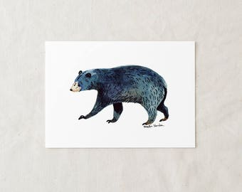 Black Bear - Art Print