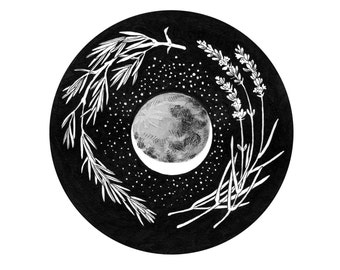 """Before the Harvest Moon - Giclee Print Herbs and Cosmos Illustration 5 x 5"""""""