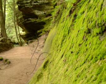 Hocking Hills photography, trails, photograph