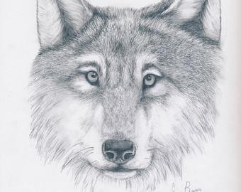 Wolf (print)