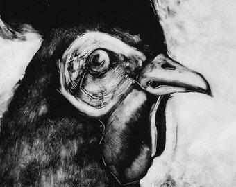 Sticker ferme lunatique monotype main tiré coq OOAK imprimer Portrait de volaille