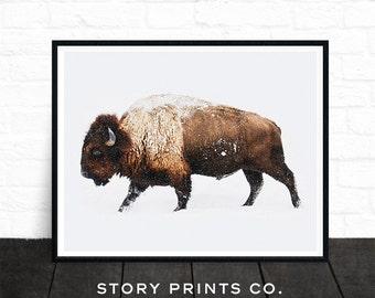 Buffalo Print, Bison Print, Large Wall Art Print, Farmhouse Decor, Animal Prints, Animal Poster Art, Living Room Art, Boys Bedroom Decor