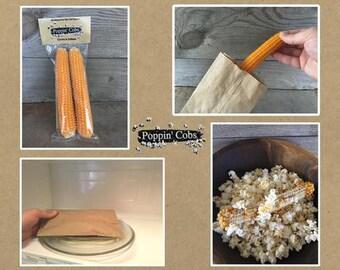 Popcorn On the Cob Stocking Stuffers (3 Twin Packs)
