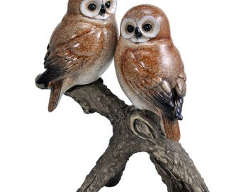 Two Owls on the Branch