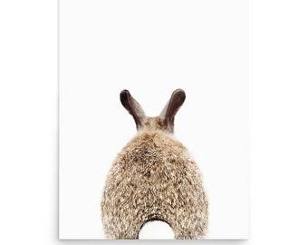 Rabbit Wall Art, Nursery Wall Art, Rabbit Tail Print, Nursery Animal Print, Rabbit Print, Fine Art Photography, Digital Print