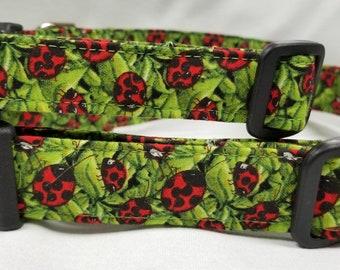 Leafy Ladybugs - Dog Collar