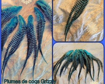 1 lot bought grizzly Rooster feathers pegs = 1 free
