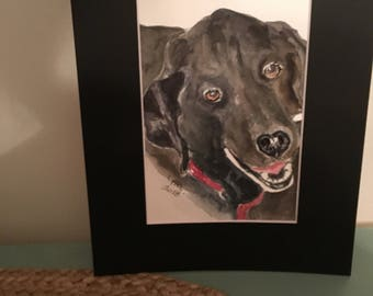 Pet portrait painted from your photo