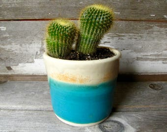 succulent planter  handmade - flower pot- planter - house plant pot - cactus - gift - gardening -house warming.