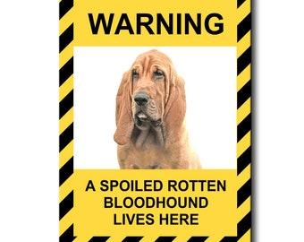 Bloodhound Spoiled Rotten Fridge Magnet