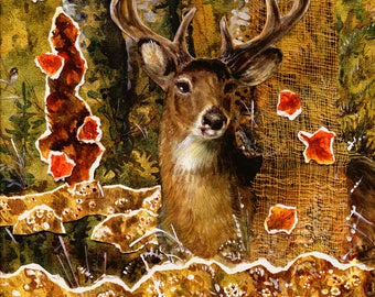 First Frost Buck - Whitetail Deer - Limited Edition Reproduction Giclee Print in 16x20 black mat