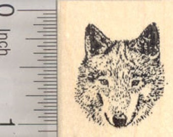 Gray Wolf Rubber Stamp, Timber, Western Wolves, Small D25137 Wood Mounted