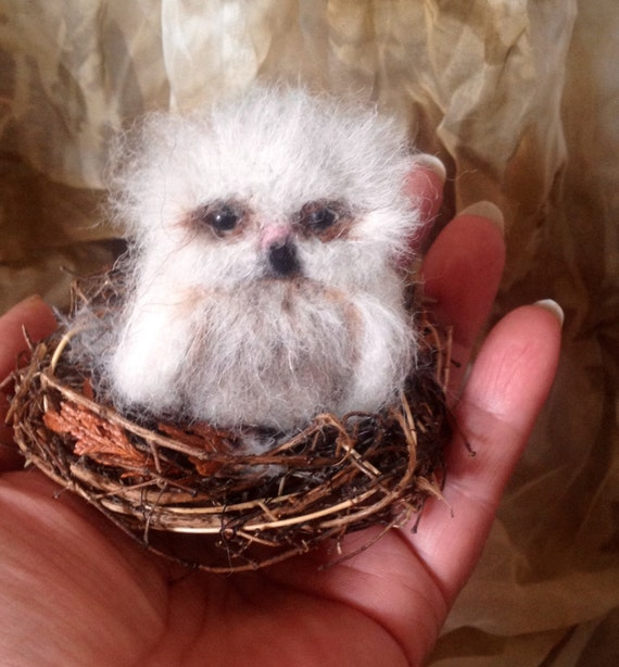 Needle Felted Baby Owl Owlet OOAK handmade realistic wildlife fantasy fauxidermy sculpture ornament  Bird Collectable